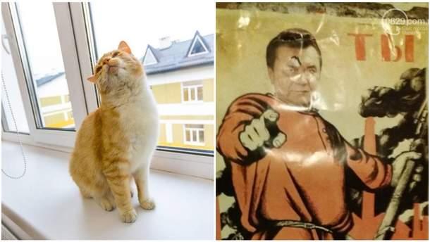 Найсмішніші меми тижня: кіт Порошенка та Янукович-червоногвардієць