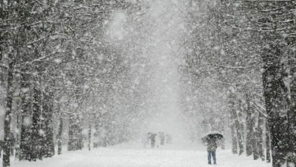 Снегопады наделали беды в Украине