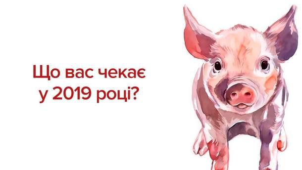 Східний гороскоп на 2019 рік Жовтої Земляної Свині