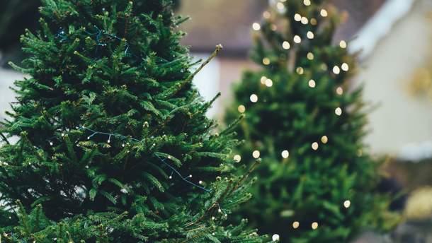27 грудня 2018 – свято в Україні та що не можна робити 27 грудня 2018