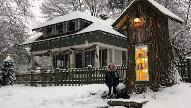 Волшебный домик с книгами: в США женщина превратила мертвое дерево в библиотеку