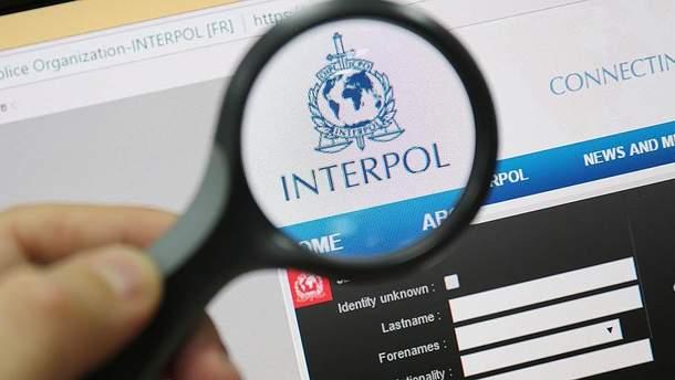 Украинские пограничники разоблачили международных преступников, которых разыскивал Интерпол