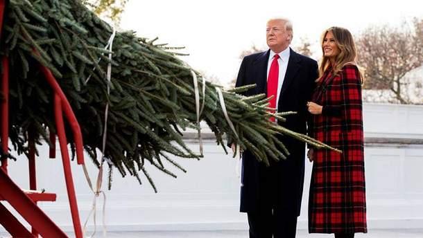 Мелания Трамп показала заснеженные пейзажи из Белого дома: эффектные фото