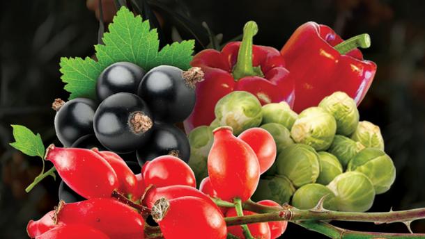 5 продуктов с наибольшим содержанием витамина С