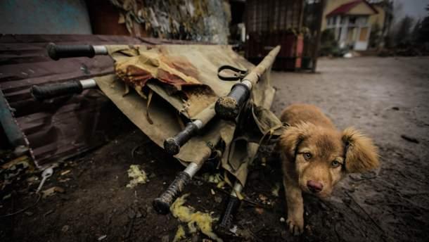 ОБСЄ зафіксувала у Золотому-5 пошкоджені окупантами будинки
