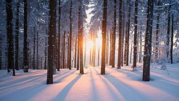 Погода 3 февраля 2019 Украина - прогноз погоды от синоптика