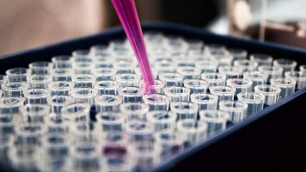 Ученые открыли новый вид тканей