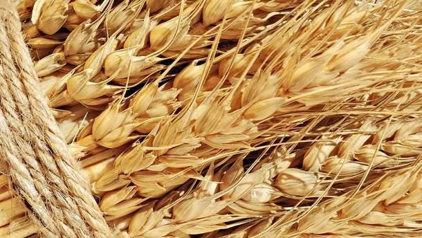 Рынок зерна