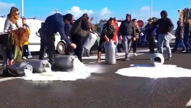 Итальянские фермеры вылили на проезжую часть тысячи тонн молока