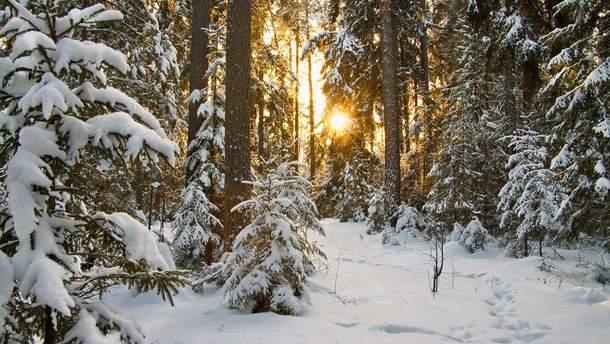 Погода 15 февраля 2019 Украина: какую погоду обещают синоптики на Сретение 2019