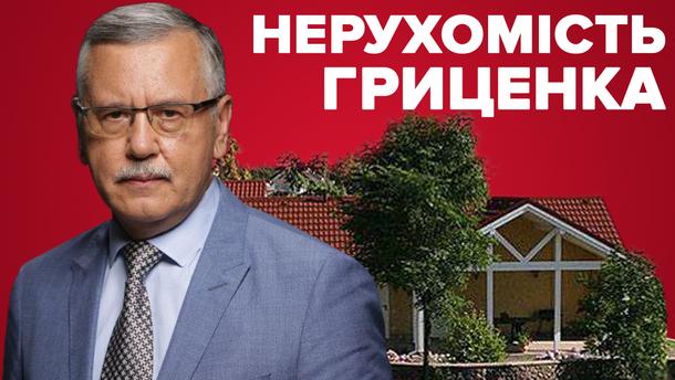 Нерухомість Анатолія Гриценка: що приховує кандидат в Верховну Раду