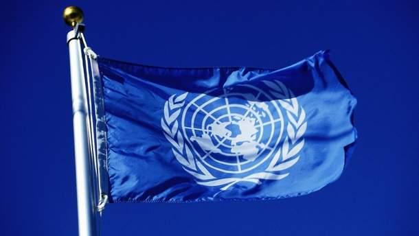 Моніторингова місія ООН з прав людини