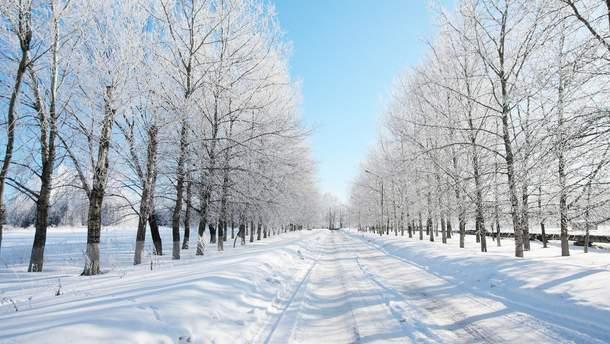 Погода 23 февраля 2019 Украина - прогноз погоды синоптика