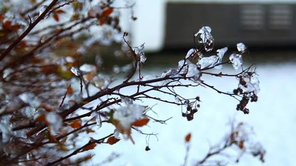 Погода 28 лютого 2019 Україна - прогноз погоди синоптиків