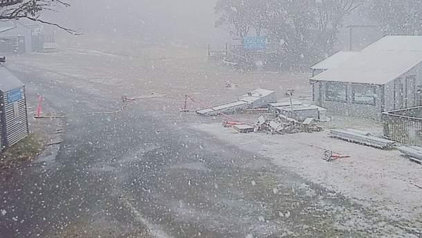 В Австралии выпал  снег