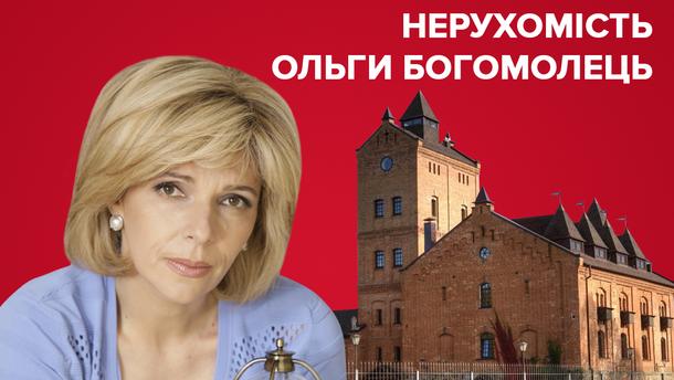 Нерухомість Богомолець - все про маєтки кандидатки в президенти України 2019