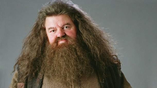 """Робби Колтрейн в роли Хагрида в """"Гарри Поттере"""""""