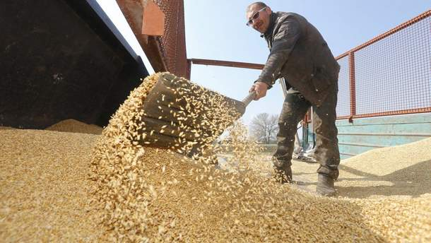 Зернова промисловість