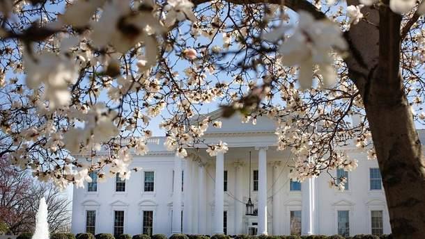 Білий дім весною: чарівні фото
