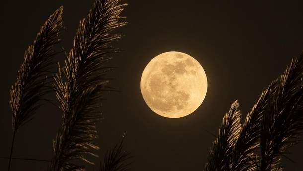 Как выглядит поверхность Луны