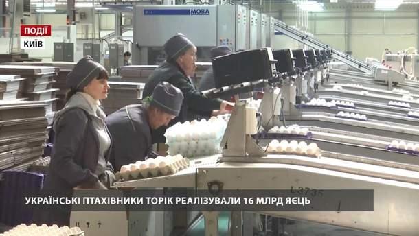 Українські птахівники торік реалізували 16 мільярдів яєць