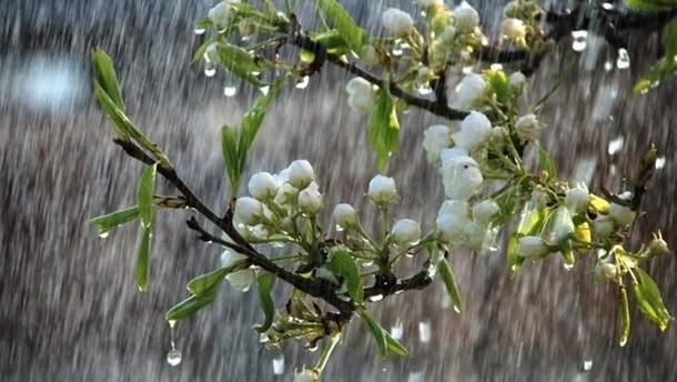 В Украину идет циклон с дождями и похолоданием