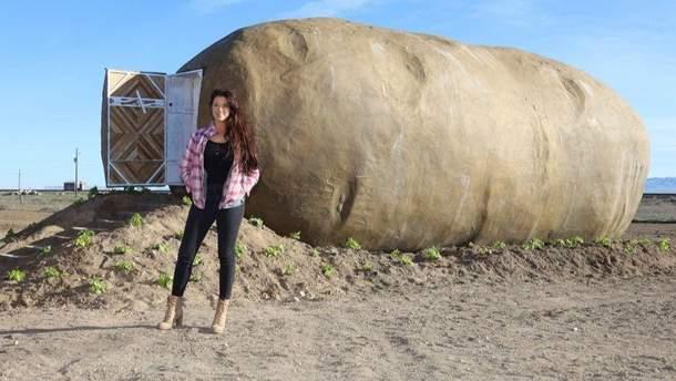 Дом-картофелину можно арендовать в США