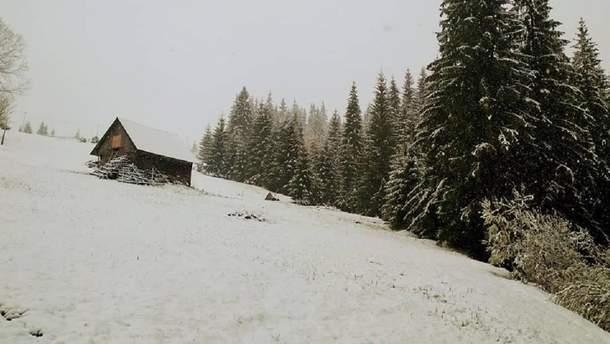 Карпаты в мае засыпало снегом