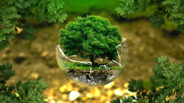 Як релігія впливає на бачення екології
