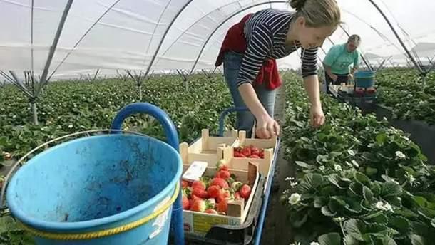 Работники могут получить иностранную пенсию