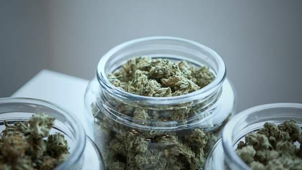 Створили марихуану без заборонених речовин