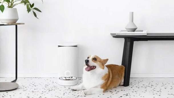 Годівничка для домашніх тварин