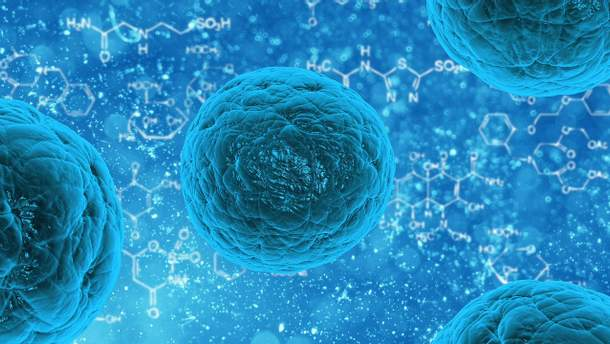 Імунні клітини можуть лікувати рак