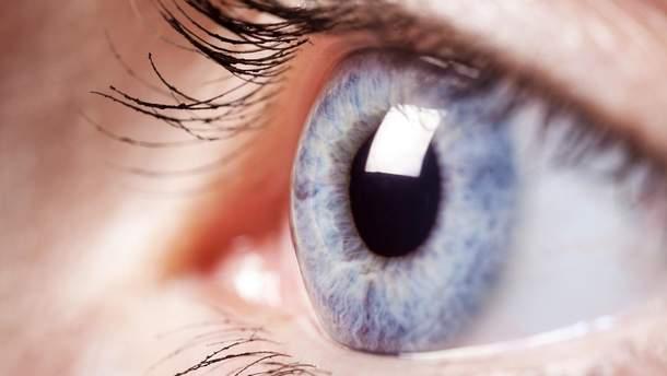 Впервые удалось напечатать роговицу глаза на 3D принтере: фото