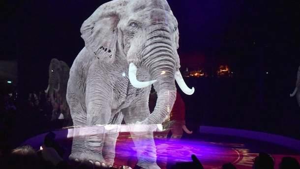 Немецкий цирк отказался от дрессированных животных