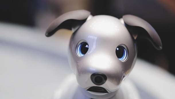 Роботизований пес компанії Sony