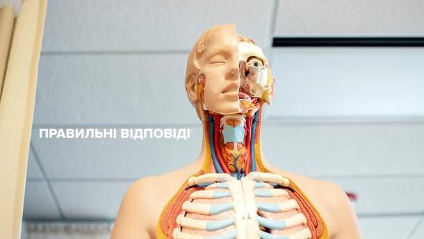 ВНО 2019 (ЗНО 2019) биология - правильные ответы теста по биологии