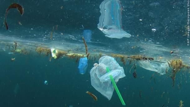 Готовы ли украинцы отказаться от пластика в быту?