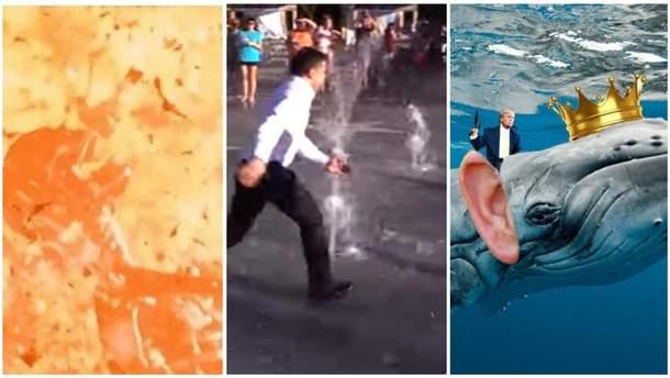 Самые смешные мемы недели: адская жара, Зеленский и фонтан, Трамп и принц китов