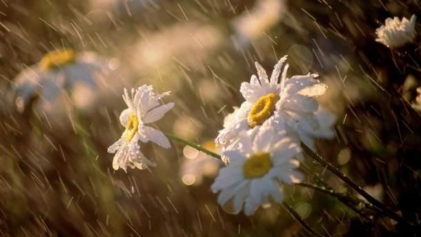 Погода 21 червня 2019 Україна - прогноз погоди від синоптика