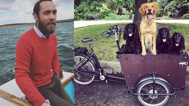 Брат Кейт Міддлтон заявив про крадіжку унікального велосипеда, на якому він возив своїх собак
