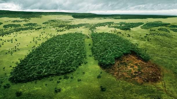 Тема екології