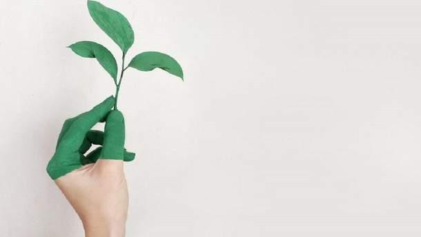 Тема екології в політиці