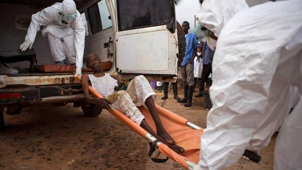 Вирус Эбола 2019 - происхождение, симптомы и лечение вируса