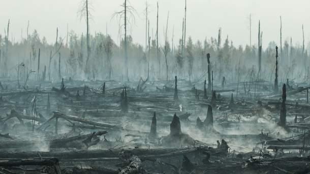 Пожежа у Сибірі 2019 – відео з супутника пожежі, його не гасять