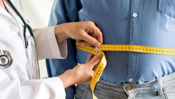 Обнаружили бактерии, которые помогут бороться с ожирением