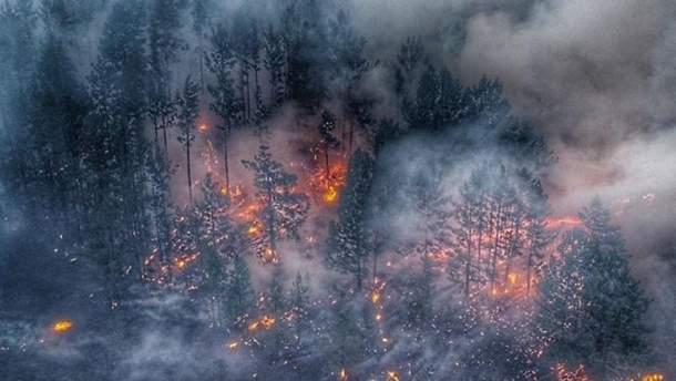 Пожары в Сибири, продолжают гореть леса – реакция соцсетей – 2019