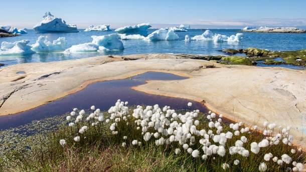Глобальное потепление – проблема, с которой нужно бороться уже сегодня