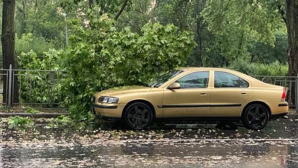 Ураган в Києві 8 серпня 2019 – фото і відео погоди в Києві