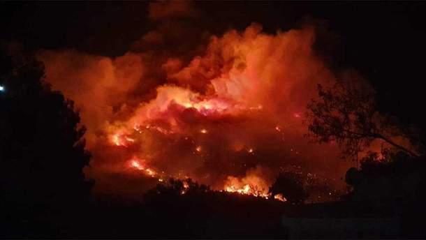 Пожар в Греции 12 августа 2019 – фото лесного пожара